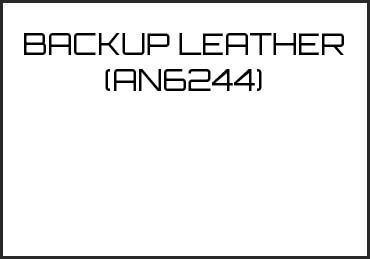 Picture for category BACKUP LEATHER (AN6244)